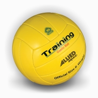 Gaelic Training Football